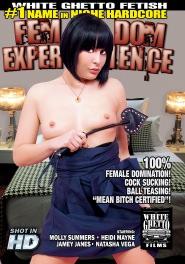 Fem Dom Experience DVD Cover