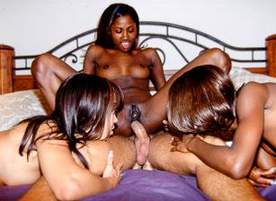 Black Beauties, Scene #01