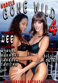 Models Gone Wild #04 DVD Cover