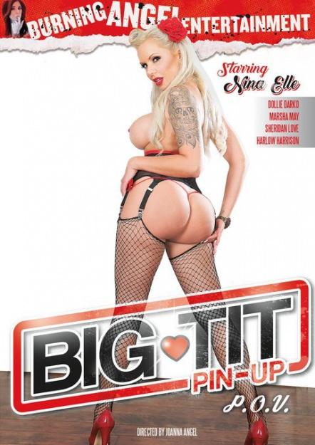 Big Tit Pin-Up POV Dvd Cover