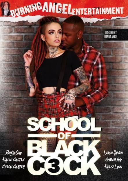 School Of Black Cock #03 Dvd Cover