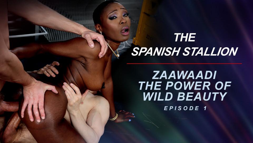 The Spanish Stallion: Zaawaadi The Power Of Wild Beauty  - Episode 1