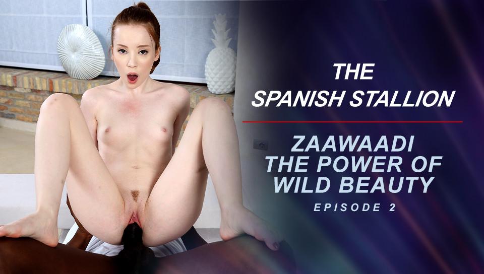 The Spanish Stallion: Zaawaadi The Power Of Wild Beauty  - Episode 2