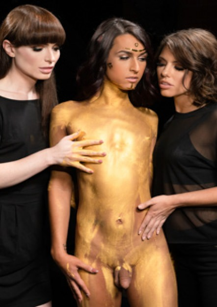 Transfixed Update - Stay Gold