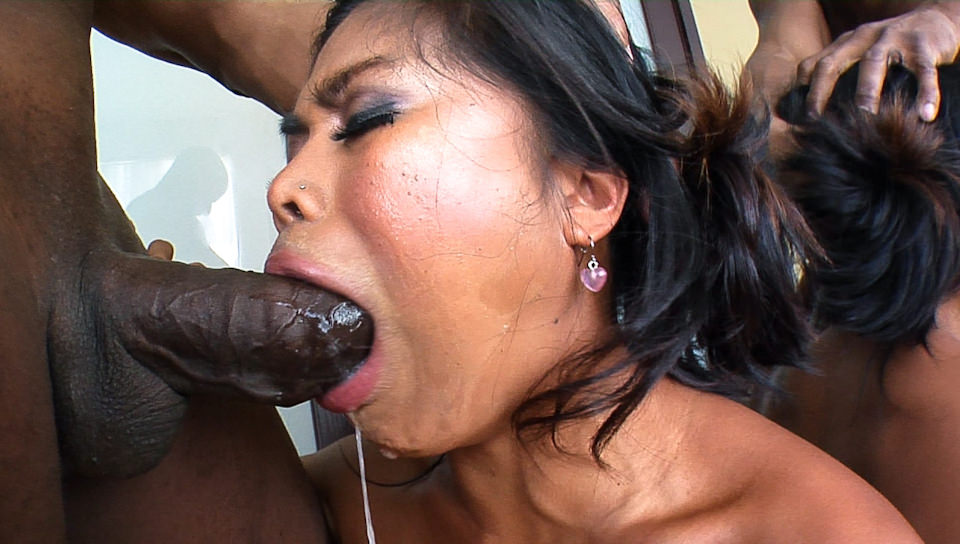 JD-Asian Fuck Faces-Arcadia Dayida
